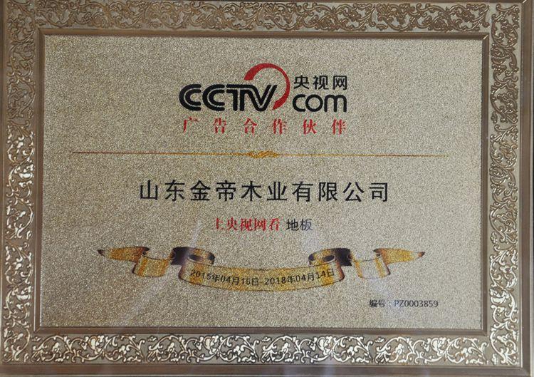 CCTV央视网战略合作品牌