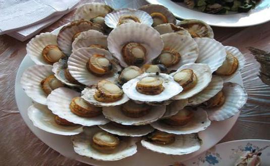 哈仙岛美食,海岛纯粹的渔家海鲜大咖