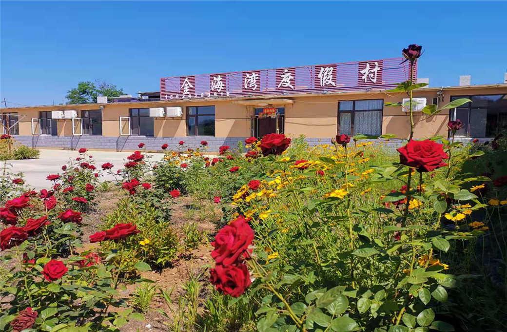 在辽宁大连有一座神秘的海岛,一家特别的店:哈仙岛金海湾度假村