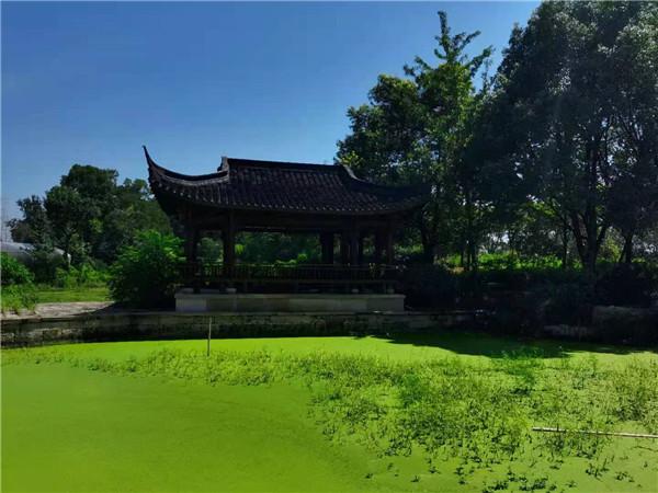 河南园林景观公司