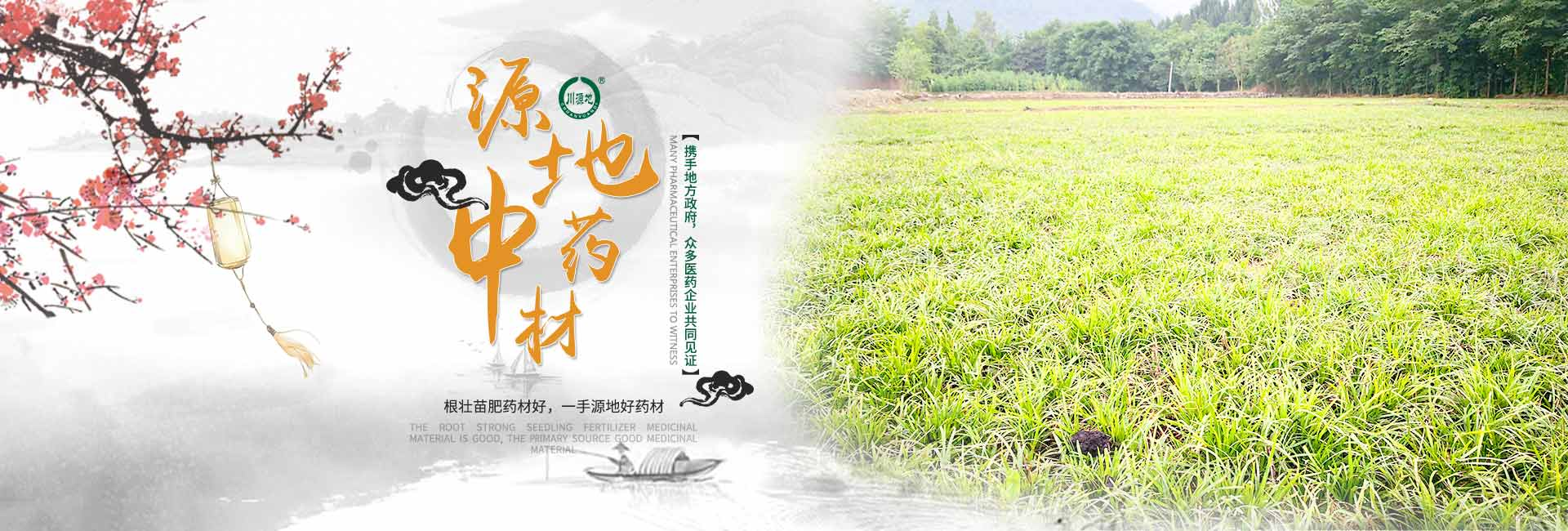 四川省源地中药材种植有限责任公司