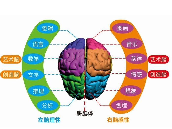 襄阳快速阅读培训学校