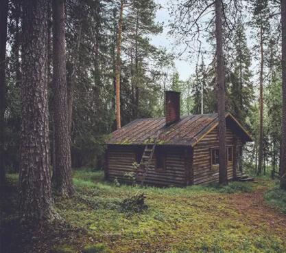 森林里面建造的防腐木木屋应该怎么样来预防腐蚀