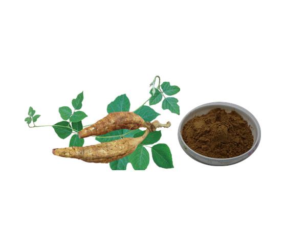陕西植物提取物厂家