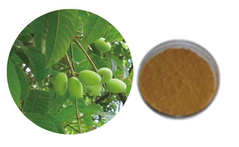 西安植物提取物厂家
