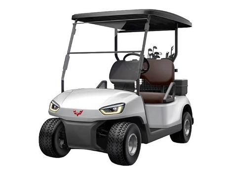 T200系列高尔夫球车