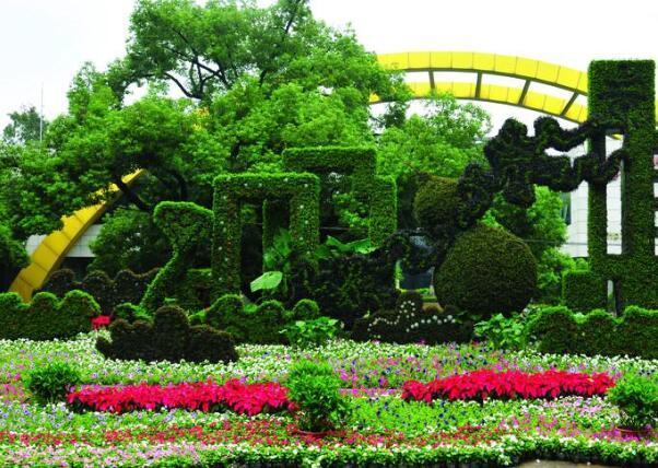 五色草造型的植物绿雕究竟在生活中有哪些区别呢
