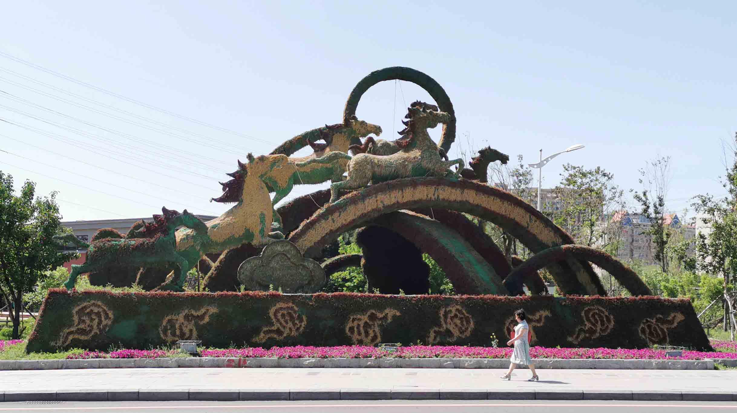 吉林五色草造型设计厂家