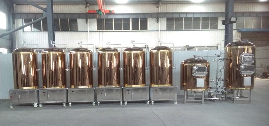 中小型啤酒厂设备  尺寸可定制