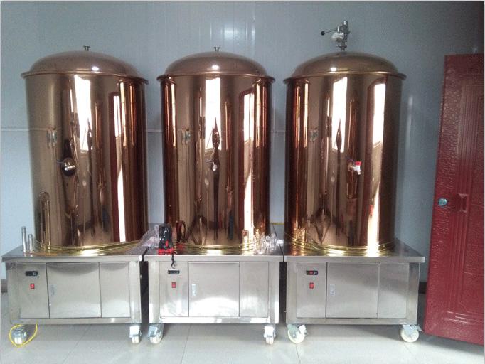 小型啤酒設備 麥芽原料釀造 可定制