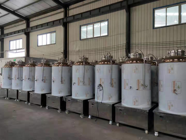 精酿啤酒成套设备_南阳源鑫机械厂家直销