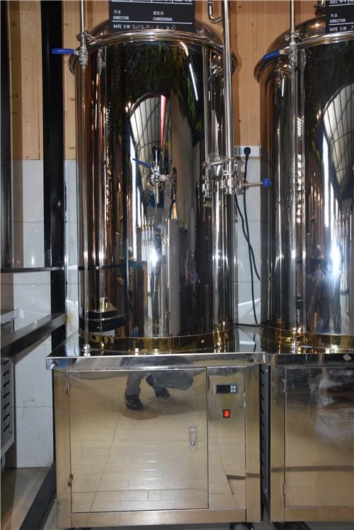 源鑫啤酒设备在外形上会有颜色变化吗