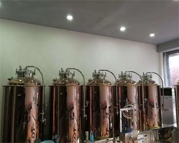 某客戶定制精釀啤酒設備
