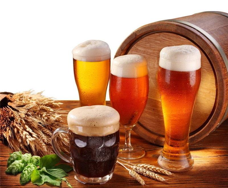南陽源鑫---什么樣的啤酒有營養?