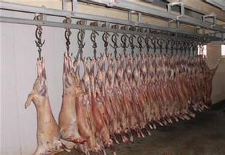 关于牛羊肉类的保鲜冷藏小知识