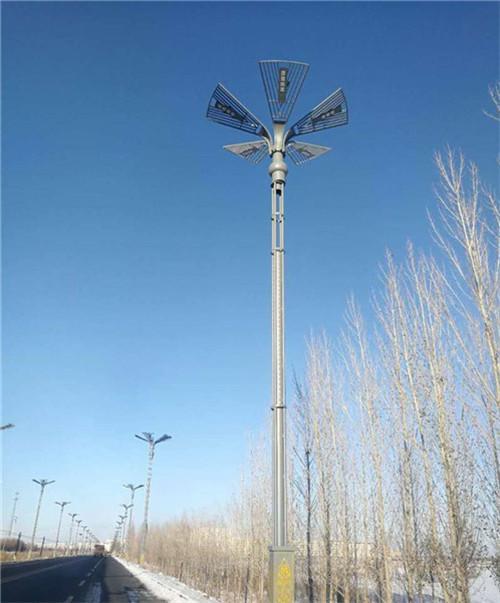 道路安装太阳能灯的案例
