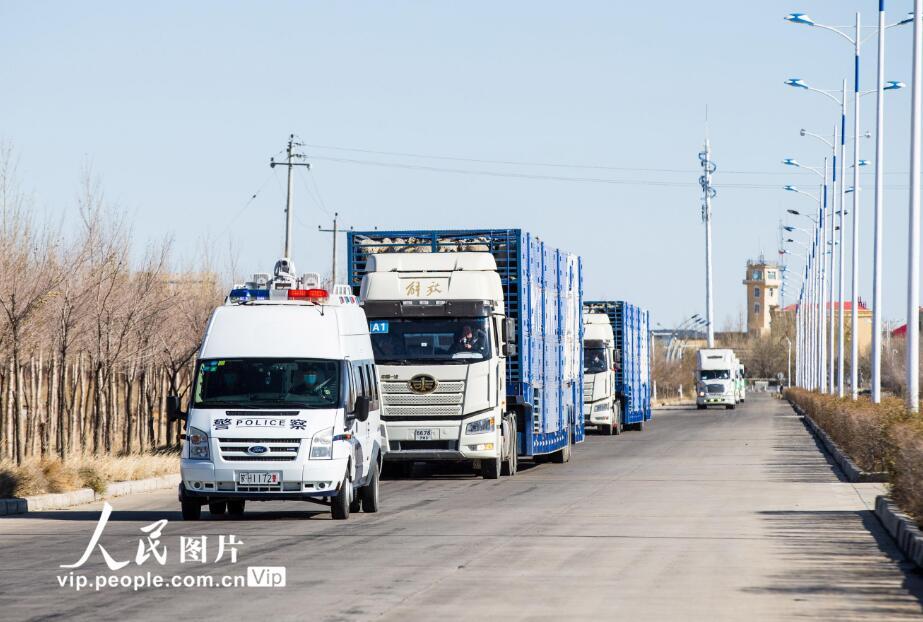 内蒙古:开通绿色通道,保证蒙古国捐赠羊快速通关