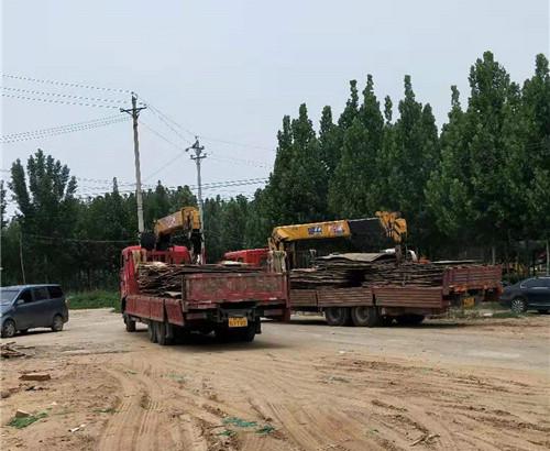 河南钢板挖掘机出租案例