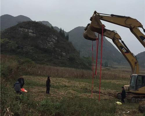 河南挖掘机租赁案例