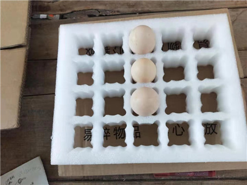 珍珠棉蛋托