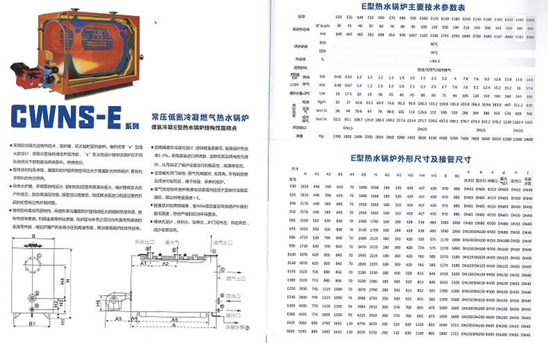 CWNS-E系列常压低氮冷凝热水锅炉