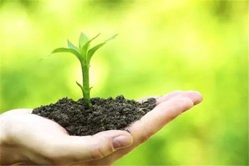 有机肥料销售厂家