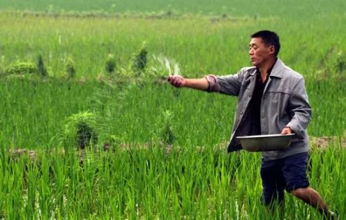 肥料销售厂家