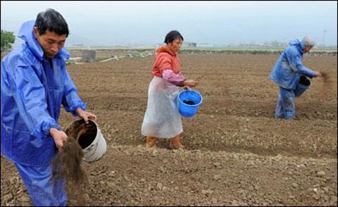 虽然现在是冬季,但其实仍有一些地区的农作物需要进行施肥处理