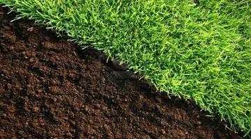 生物有机肥料价格