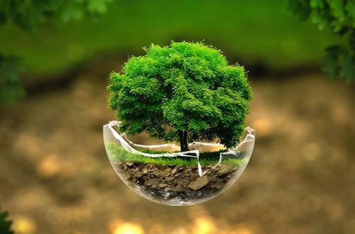 使用湖北生物有机肥对农作物有利,具体表现为以下这些方面