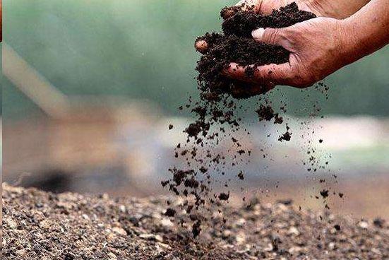有机肥和湖北生物有机肥料是同一种肥料吗?如果不是,两者又有哪些区别呢