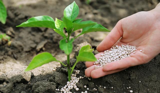 虽然湖北肥料不会轻易失效,但还是要科学的存储肥料,降低肥料失效的概率