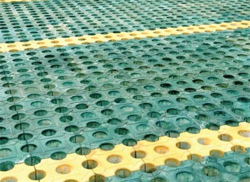 专业的植草砖生产厂家