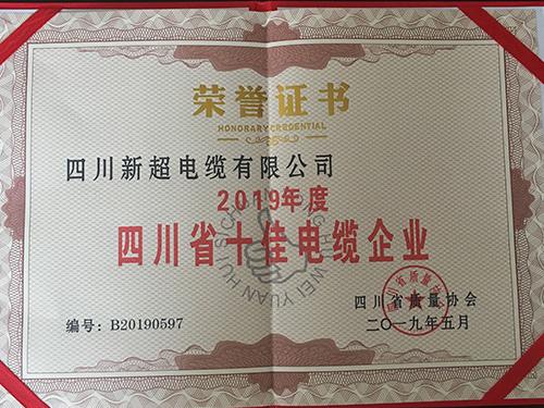 四川省十佳电缆企业