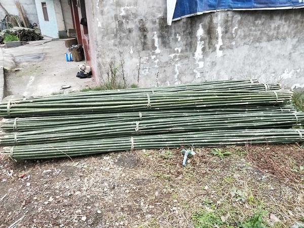 四川竹笆生产视频