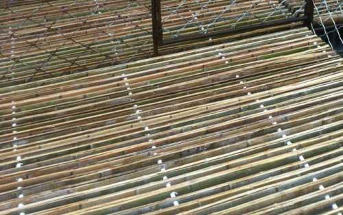 四川竹羊床的使用的类别有哪些