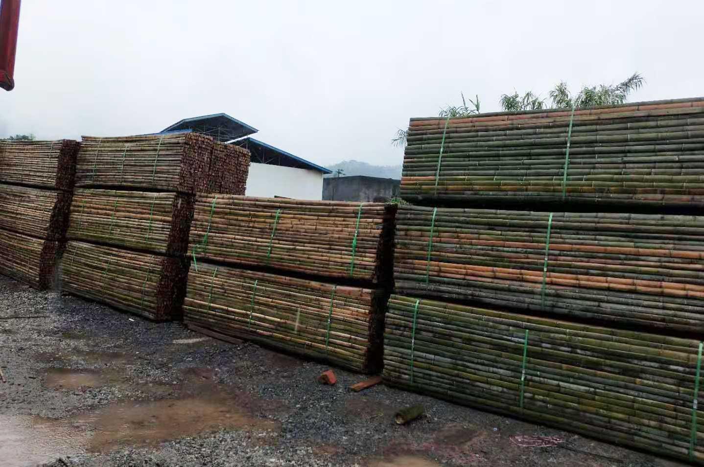 振兴竹木|竹架板生虫子如何治