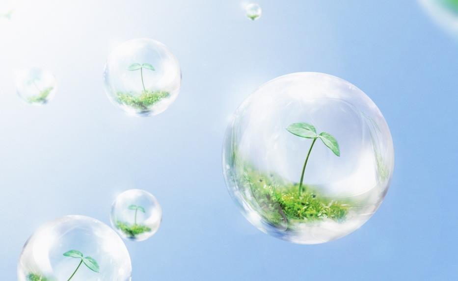 年产200吨白厂丝生产线改建项目 环境影响评价信息公示