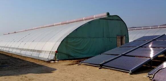 太阳能热水循环加温温室解决温室大棚的地温和室温问题