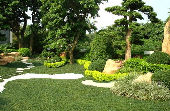園林綠化的植物八大養護要點