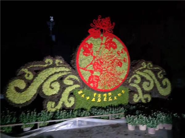 河南菊花造型制作