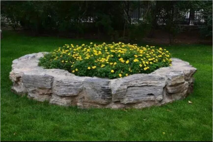 总结菊花的特点和菊花造型的优势