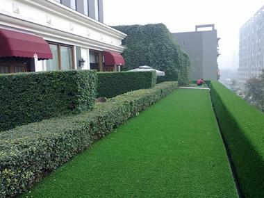 清理成都人造草坪需要注意什么事项?且听九州一一道来