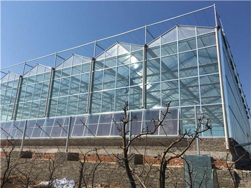 安阳汤阴生态餐厅温室