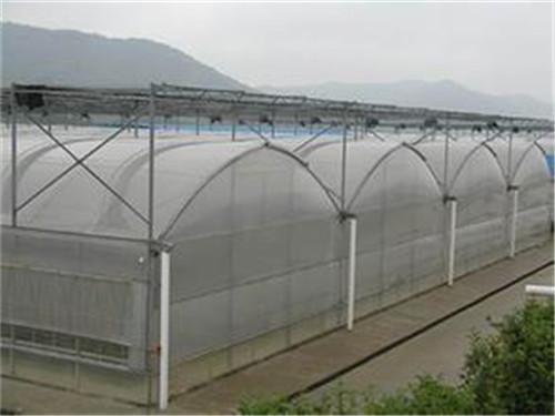 使用河南薄膜大棚的时候如何更好的对内部进行除湿