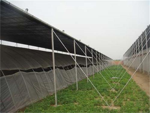 怎样对河南温室大棚浇水才是比较合理的做法