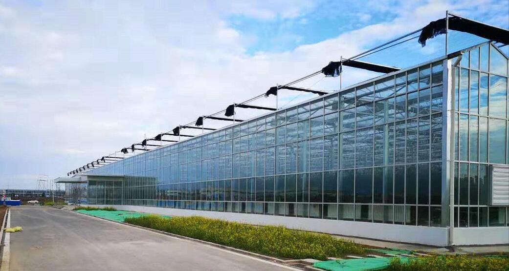 贵州花溪温室