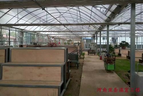 一亩温室大棚多少钱