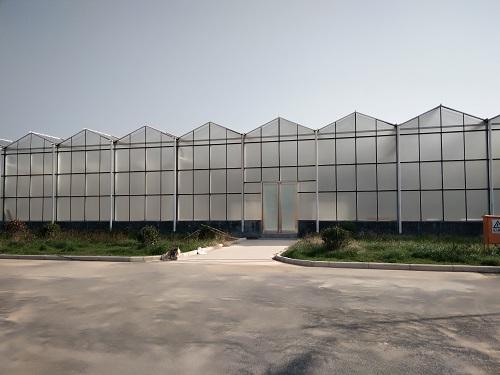 高散射玻璃温室