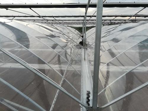 塑料薄膜温室大棚